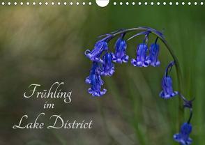Frühling im Lake District / Nr. 205 (Wandkalender 2020 DIN A4 quer) von Uppena,  Leon