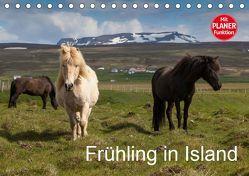 Frühling in Island (Tischkalender 2019 DIN A5 quer) von Gulbins,  Helmut