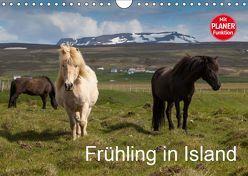 Frühling in Island (Wandkalender 2019 DIN A4 quer) von Gulbins,  Helmut