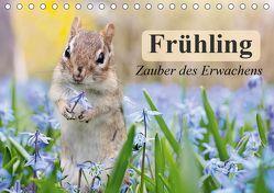 Frühling. Zauber des Erwachens (Tischkalender 2019 DIN A5 quer)