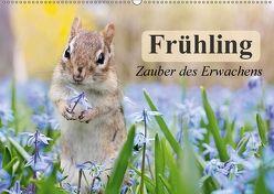 Frühling. Zauber des Erwachens (Wandkalender 2018 DIN A2 quer) von Stanzer,  Elisabeth