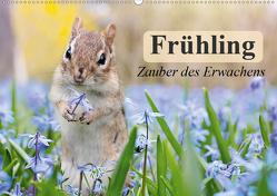 Frühling. Zauber des Erwachens (Wandkalender 2020 DIN A2 quer) von Stanzer,  Elisabeth