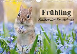 Frühling. Zauber des Erwachens (Wandkalender 2020 DIN A4 quer) von Stanzer,  Elisabeth