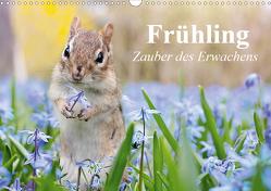 Frühling. Zauber des Erwachens (Wandkalender 2021 DIN A3 quer) von Stanzer,  Elisabeth