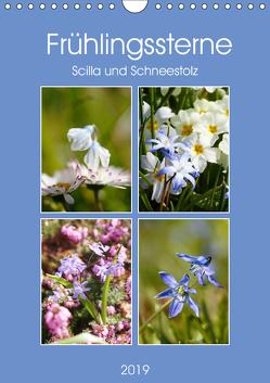 Frühlingssterne Scilla und Schneestolz (Wandkalender 2019 DIN A4 hoch) von Kruse,  Gisela