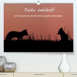 Fuchs entdeckt – im Naturparadies der Mecklenburgischen Seenplatte (Premium, hochwertiger DIN A2 Wandkalender 2020, Kunstdruck in Hochglanz) von Pretzel - FotoPretzel,  André
