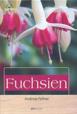 Fuchsien: Aufzucht und Pflege von Fellner,  Andreas