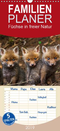 Füchse in freier Natur – Familienplaner hoch (Wandkalender 2019 , 21 cm x 45 cm, hoch) von Ulrich Hopp,  Dr.