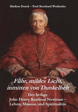 Führ, mildes Licht, inmitten von Dunkelheit von Dusek,  Markus, Wodrazka,  Paul Bernhard