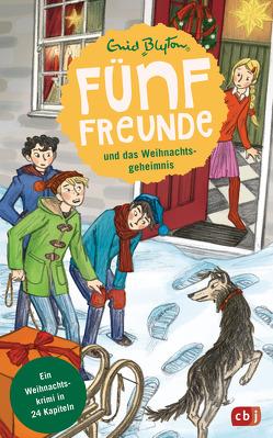 Fünf Freunde und das Weihnachtsgeheimnis von Blyton,  Enid, Raidt,  Gerda