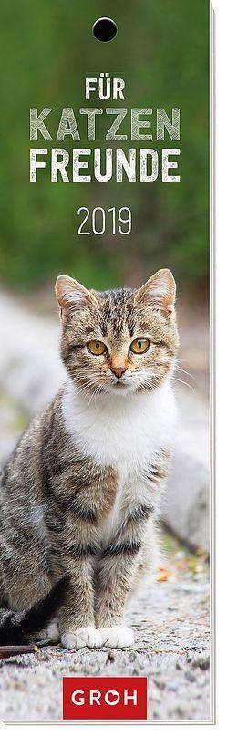 Für Katzenfreunde 2019 von Groh Redaktionsteam
