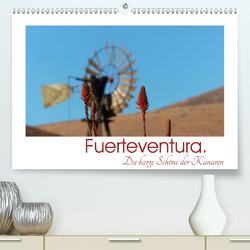 Fuerteventura. Die karge Schöne der Kanaren (Premium, hochwertiger DIN A2 Wandkalender 2020, Kunstdruck in Hochglanz) von M. Laube,  Lucy