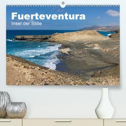 Fuerteventura, Insel der Stille (Premium, hochwertiger DIN A2 Wandkalender 2021, Kunstdruck in Hochglanz) von Friedchen,  Michael