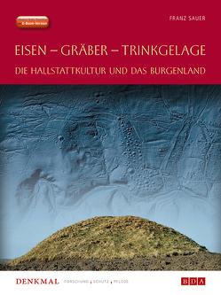 Fundberichte Materialheft A Sonderheft 24 von Sauer,  Franz