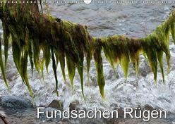 Fundsachen Rügen (Wandkalender 2019 DIN A3 quer) von Zinn,  Gerhard