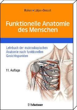 Funktionelle Anatomie des Menschen von Lütjen-Drecoll,  Elke, Rohen,  Johannes W
