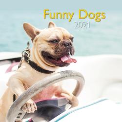 Funny Dogs 2021 – Wand-Kalender – Broschüren-Kalender – A&I – 30×30 – 30×60 geöffnet