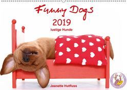 Funny Dogs (Wandkalender 2019 DIN A2 quer) von Hutfluss,  Jeanette