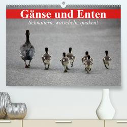 Gänse und Enten. Schnattern, watscheln, quaken! (Premium, hochwertiger DIN A2 Wandkalender 2021, Kunstdruck in Hochglanz) von Stanzer,  Elisabeth