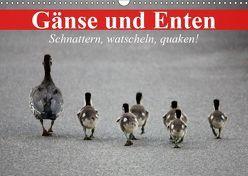 Gänse und Enten. Schnattern, watscheln, quaken! (Wandkalender 2019 DIN A3 quer) von Stanzer,  Elisabeth