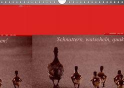 Gänse und Enten. Schnattern, watscheln, quaken! (Wandkalender 2019 DIN A4 quer) von Stanzer,  Elisabeth