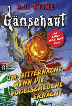 Gänsehaut – Um Mitternacht, wenn die Vogelscheuche erwacht von Kienitz,  Günter W., Stine,  R.L.