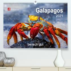 Galapagos 2021 tierisch gut (Premium, hochwertiger DIN A2 Wandkalender 2021, Kunstdruck in Hochglanz) von Bergwitz,  Uwe