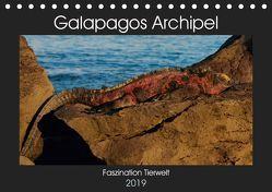 Galapagos Archipel- Faszination Tierwelt (Tischkalender 2019 DIN A5 quer) von Photo4emotion.com