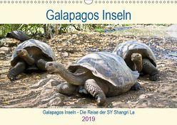 Galapagos inseln – Die Reise der SY Shangri La (Wandkalender 2019 DIN A3 quer) von Friedrich,  Christine