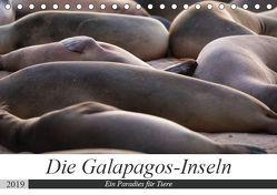 Galapagos-Inseln – Ein Paradies für Tiere (Tischkalender 2019 DIN A5 quer) von Dobrindt,  Jeanette