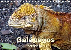 Galápagos – tierisch gut (Tischkalender 2019 DIN A5 quer) von Rudolf Blank,  Dr.