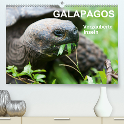 Galapagos. Verzauberte Inseln (Premium, hochwertiger DIN A2 Wandkalender 2021, Kunstdruck in Hochglanz) von Reuke,  Sabine