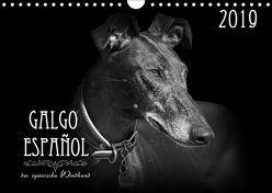 Galgo Español – der spanische Windhund 2019 (Wandkalender 2019 DIN A4 quer) von - Andrea Redecker,  4pfoten-design