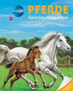 Galileo Wissen: Pferde von Vandewièle,  Agnès