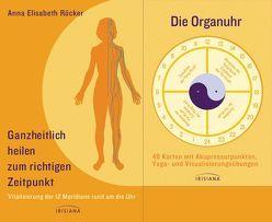Ganzheitlich heilen zum richtigen Zeitpunkt-Set von Röcker,  Anna E.