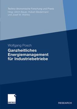 Ganzheitliches Energiemanagement für Industriebetriebe von Posch,  Wolfgang