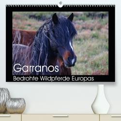 Garranos – Bedrohte Wildpferde Europas (Premium, hochwertiger DIN A2 Wandkalender 2021, Kunstdruck in Hochglanz) von Bengtsson/www.perlenfaenger.com,  Sabine