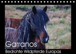 Garranos – Bedrohte Wildpferde Europas (Tischkalender 2018 DIN A5 quer) von Bengtsson/www.perlenfaenger.com,  Sabine