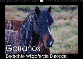 Garranos – Bedrohte Wildpferde Europas (Wandkalender 2018 DIN A3 quer) von Bengtsson/www.perlenfaenger.com,  Sabine