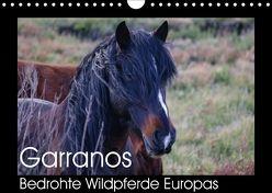 Garranos – Bedrohte Wildpferde Europas (Wandkalender 2018 DIN A4 quer) von Bengtsson/www.perlenfaenger.com,  Sabine