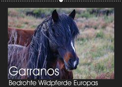 Garranos – Bedrohte Wildpferde Europas (Wandkalender 2019 DIN A2 quer) von Bengtsson/www.perlenfaenger.com,  Sabine
