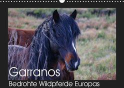 Garranos – Bedrohte Wildpferde Europas (Wandkalender 2019 DIN A3 quer) von Bengtsson/www.perlenfaenger.com,  Sabine