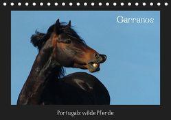 Garranos (Tischkalender 2019 DIN A5 quer) von Lampert,  Claudia