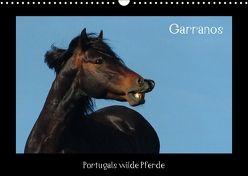 Garranos (Wandkalender 2018 DIN A3 quer) von Lampert,  Claudia
