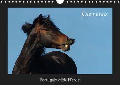 Garranos (Wandkalender 2019 DIN A4 quer) von Lampert,  Claudia