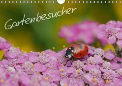 Gartenbesucher (Wandkalender 2019 DIN A4 quer) von Mueller,  Gerhard