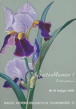 Gartenblumen / Frühlingsblumen von Klein,  Ludwig, Rauh,  Werner
