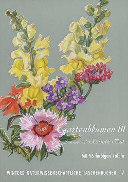 Gartenblumen / Sommerflor 1 von Klein,  Ludwig, Rauh,  Werner