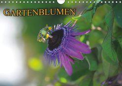 Gartenblumen (Wandkalender 2019 DIN A4 quer) von Geduldig,  Bildagentur