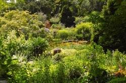 Gartenfreuden von Bach,  Hans, Thalheim,  Gerlinde